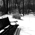 """Lonely Seat"" by RCaleca"