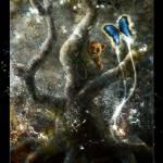 """Spirit of Eorest: Encounter by Houk"" by houk"