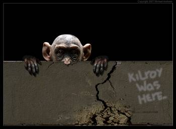 Kilroy Was Here By Michael Andrews