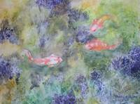Koi Swimming in the pond