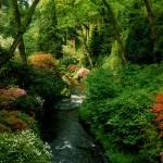"""Bodnant Garden"" by kenart"