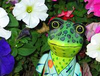 Frog and Flowers