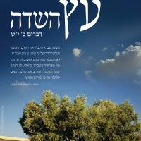 Tree of the Field Art Prints & Posters by Posters Of Israel