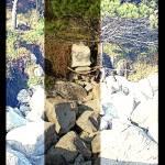"""_:1One:Pine_on_the_Rocks:_"" by vivian-mairo"