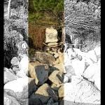 """_:4Four:Pine_on_the_Rocks:_"" by vivian-mairo"