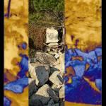 """_:Pine_on_:BLUE:_Rocks:_"" by vivian-mairo"