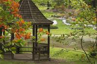 Gazebo with Azaleas