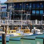 """San Francisco Wharf - Fishing Boats"" by kphotos"
