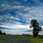 """under the blue sky"" by jcroldan"