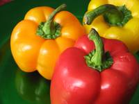 Peppers - Red, Orange, Yellow