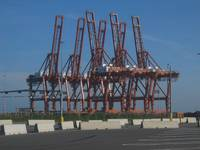 7 BIG cranes waiting for containers
