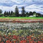 """field with flowers"" by richardnowak"