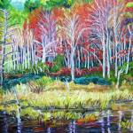 """New England Woodland Reflections"" by richardnowak"