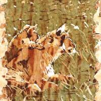 Lioness with Cub Art Prints & Posters by Katie Art