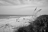Canaveral National Seashore B&W