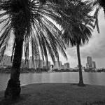 """Lake Eola Storm B&W"" by psmphotography"