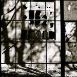 """Window Through Window"" by AbigailHill"