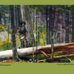 """""""Adirondacks_Winslowhomer"""" by bharat"""