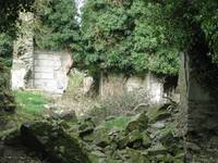 The remains of Thomastown Castle
