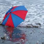 """Discarded Umbrella ~ standing its ground"" by cherryblossomtattoo"
