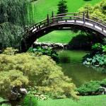 """""""Japanese Garden"""" by crysjan"""