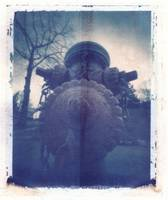 Polaroid Pinhole Image Transfer Perspective -Dog 2