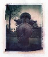 Polaroid Pinhole Image Transfer Perspective - Dog