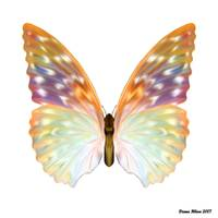Rainbow Butterfly by Diana Hliva