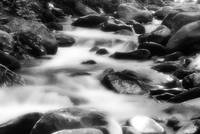Porter Creek Cascade Smoky Mountains Black and Whi