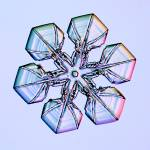 """f0105d002B"" by SnowCrystals"