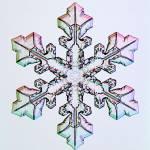 """""""f0105b082A"""" by SnowCrystals"""