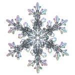 """""""f0105b126A1wt"""" by SnowCrystals"""