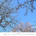 """""""Spring is in the air"""" by artforcancer"""