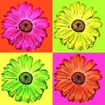 """flowers"" by sparis"