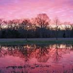 """""""Pink Sky"""" by jones3006"""