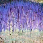 """Lavender Blue Reeds"" by RobertBurns"