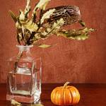 """""""October Tuesday"""" by DianaLeePhotoDesigns"""
