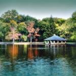 """Tilley Pond #1"" by DianaLeePhotoDesigns"