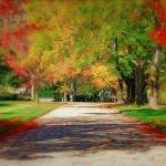 """""""Fall Drive"""" by DianaLeePhotoDesigns"""