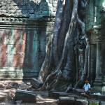 """Ta Prohm Temple, Angkor Wat,cambodia"" by mjphoto-graphics"