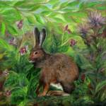 """Snowshoe Hare"" by FTMcKinstry"