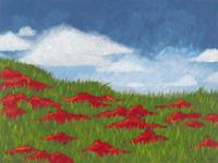 Fluff and Poppies