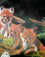 YoungFoxes