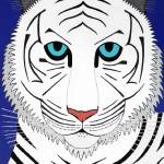"""White Tiger"" by petpawstudios"
