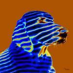 """Striped Labrador"" by dalesphotoartistry"