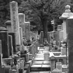 """Kyoto Cemetery"" by rachelorosco"