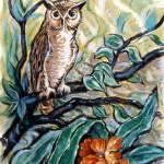 """""""Owl"""" by goellisphoto"""