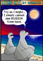 CAN POLAR BEARS SEE RUSSIA