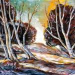 """""""Brown Trees"""" by goellisphoto"""