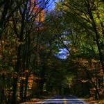 """Autumn in New England"" by Stazie"